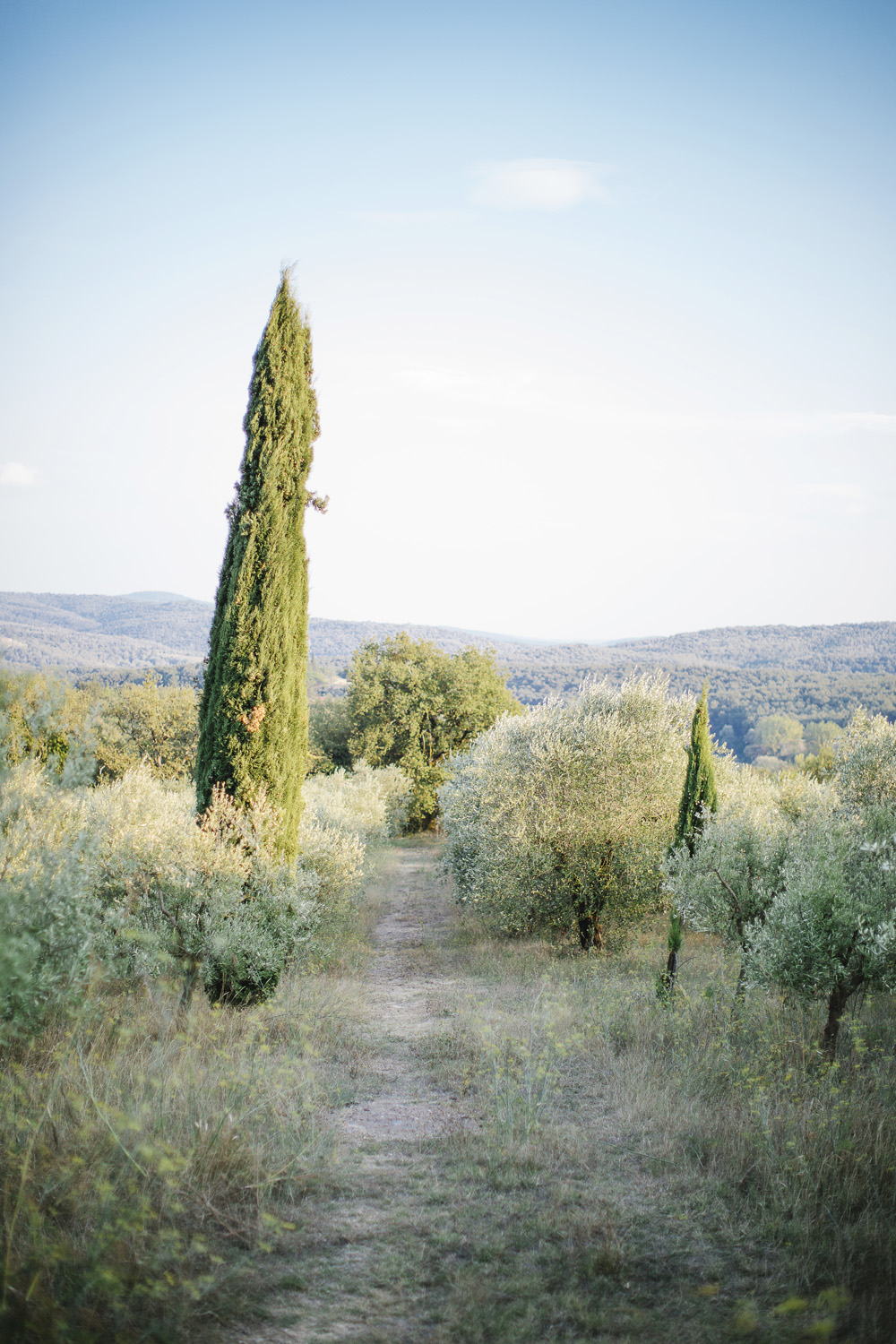 Wwedding in a Farmhouse in Tuscany